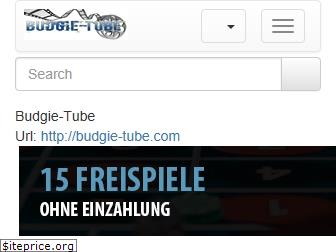 budgie-tube.com website worth