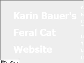 karinscats.com website worth
