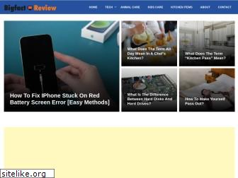 bigfactreview.com