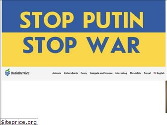 brainberries.co
