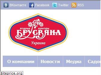 www.brusvyana.com.ua website price