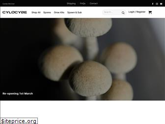 cylocybe.com