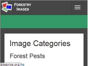 forestryimages.org