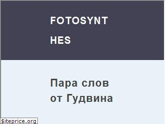 www.fotosynthes.ru website price