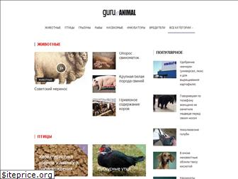 www.guruanimal.ru website price