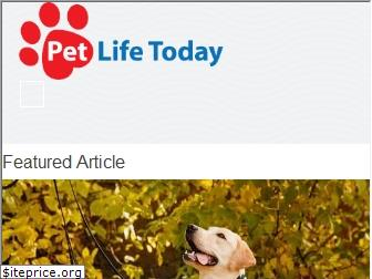 petlifetoday.com