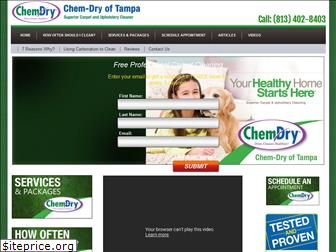 tampascarpetcleaning.com