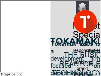 www.tokamaklabs.io website price