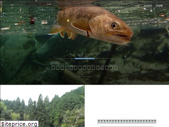 trout-in-shallows.com