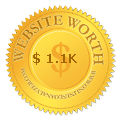 Website Worth