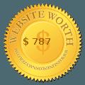Website worth and website seo checker